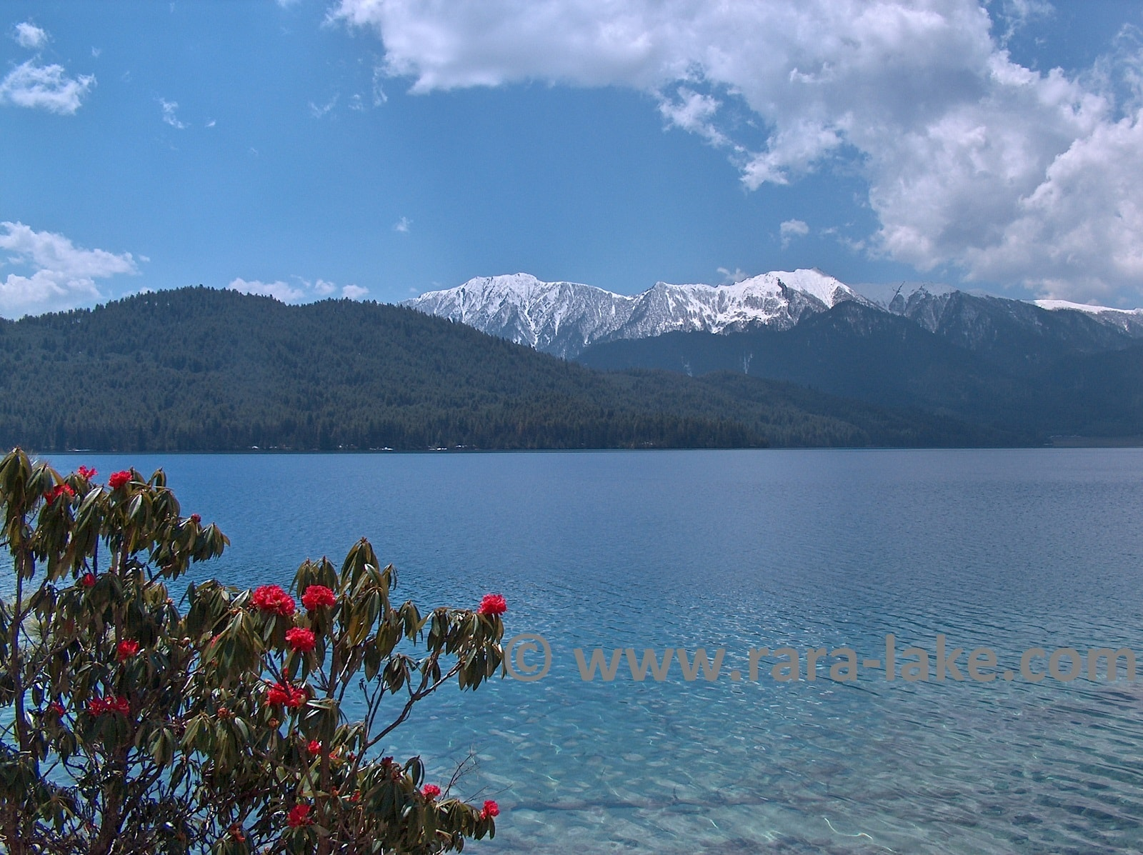 Rara Lake photo